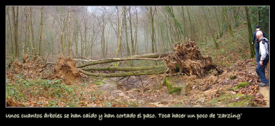 photo Pano1.jpg